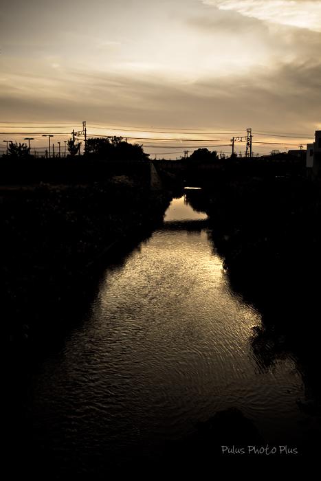 鉄橋とすすきの川夕景-(1---1).jpg